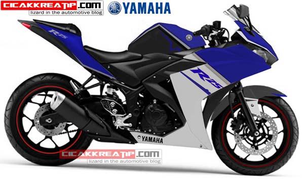Modif Yamaha R25 Kayak Begini Gan…!!