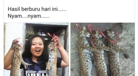 mahasiswi-pemakan-kucing-asal-jember-di-bully-netizen-b3kCFhUvMs
